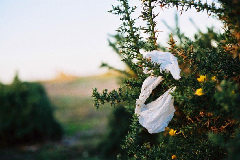 jednorazówka, śmieci, środowiska