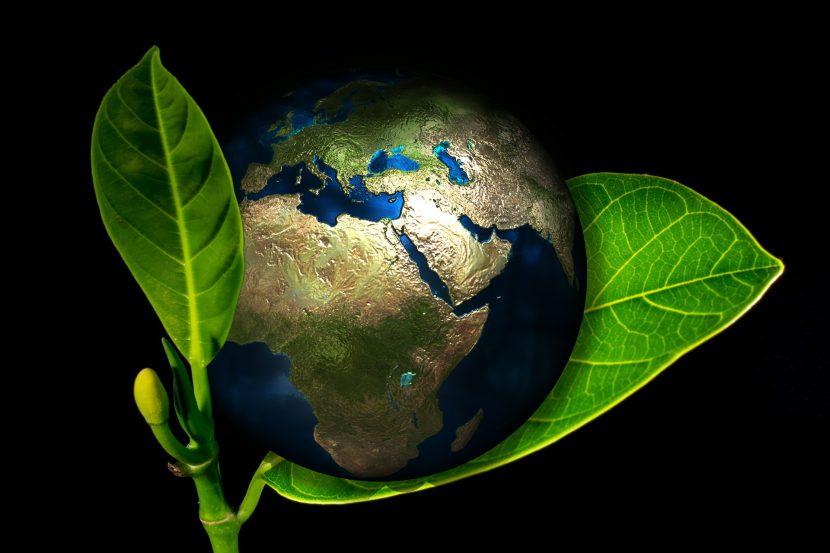 ziemia, kula ziemska, glob, listek